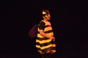 L'enfant colibre SJB 2 - 2016 233